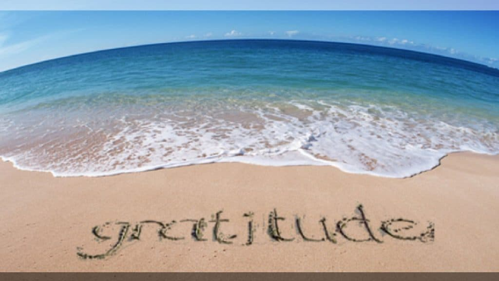 Gratitude-Living-your-Values-Blog